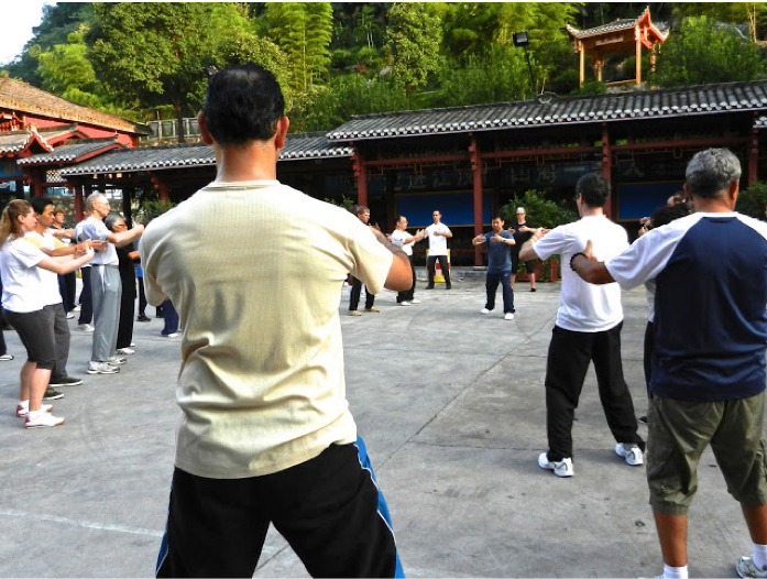 Teaching Zhan Zhuang